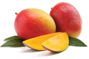 African Mango Fruit Image 300pix