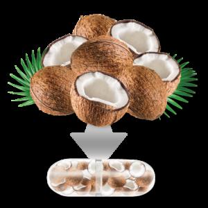 Fruitrients Coconuts